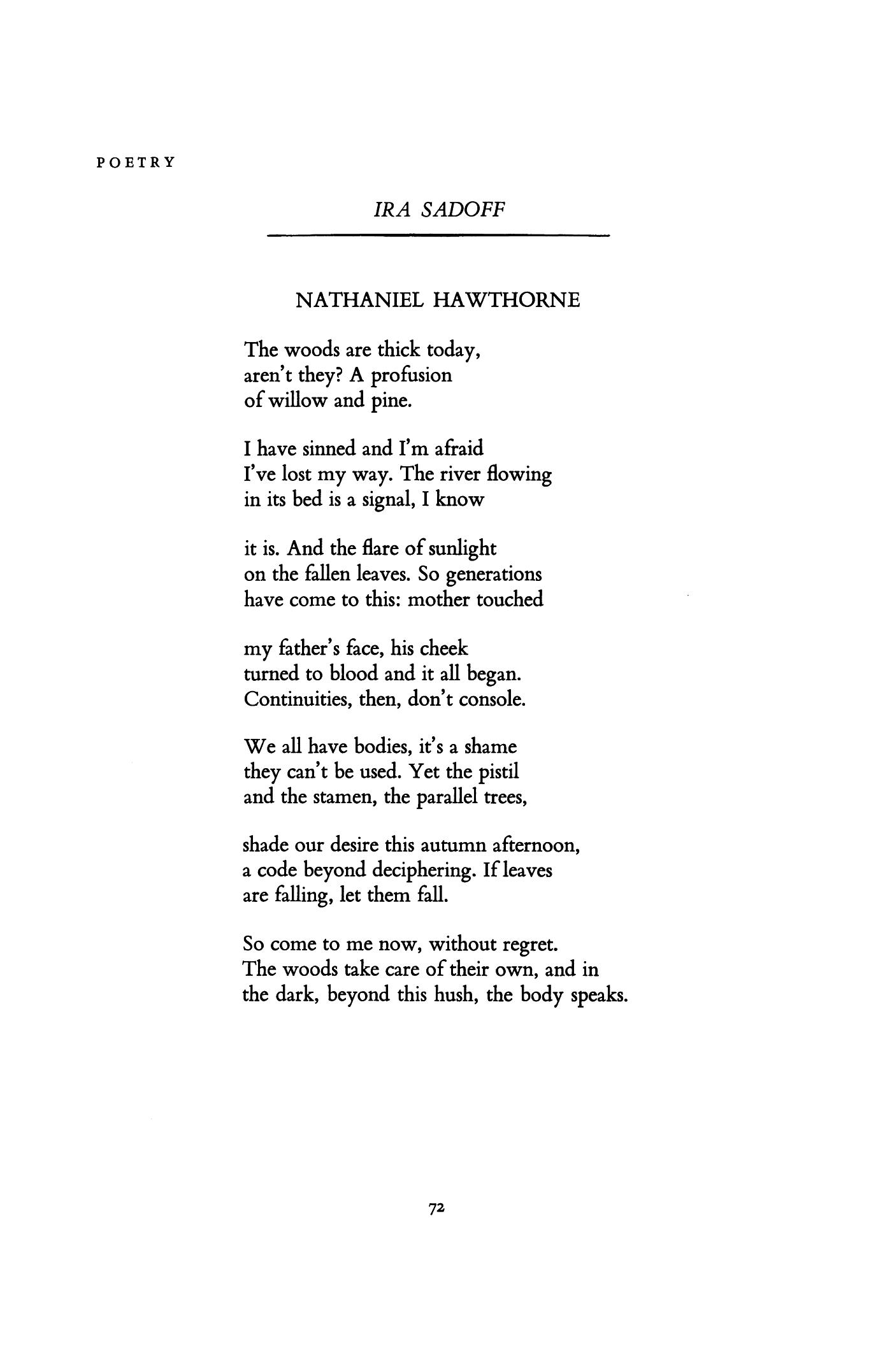 Robert finch whale essay