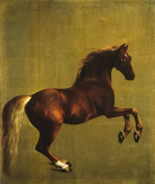 George Stubbs, Whistlejacket, oil on canvas, circa 1762, 115 x 97 in. The National Gallery, London