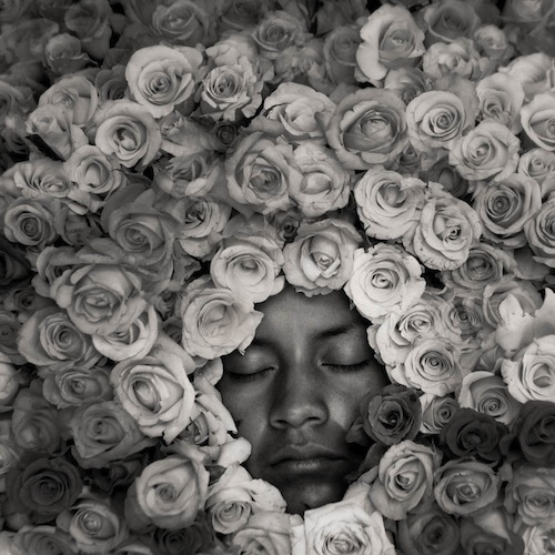 Man in roses (by Russell Monk)