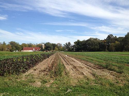 Goodman_Farm