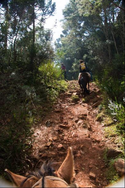 Josely on expedition to Campos Gerais, Laranjeiras Canyon, 2015. (Photos: Pedro Jerónimo Vianna de Faria)